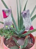 étuis-à-lunettes-laine-feutrée-violet-gris-rouge