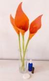 arums-laine-feutrée-orange